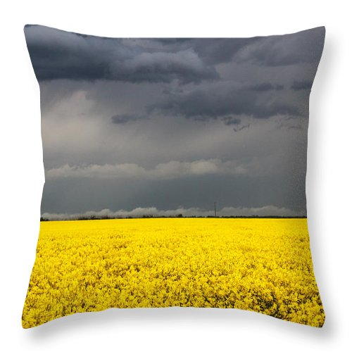 Storm Throw Pillow featuring the photograph Dark Skies by Laurie Pelletier