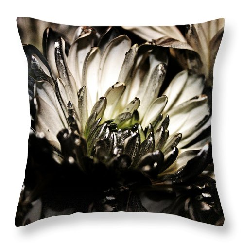 Black And White Throw Pillow featuring the photograph Darkness Prevails by Catherine Melvin