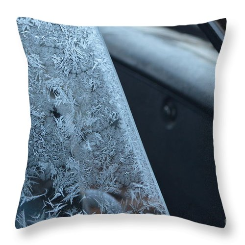Dash Throw Pillow featuring the photograph Dashing Through The Frost by Brian Boyle