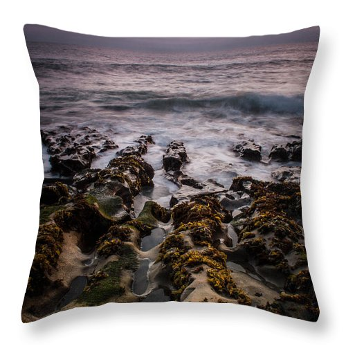 Davenport Throw Pillow featuring the photograph Davenport Fingers by Dayne Reast