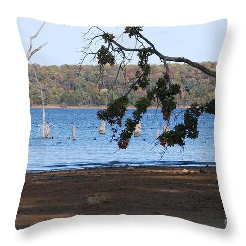 Water Throw Pillow featuring the photograph Day At The Lake by Mark McReynolds