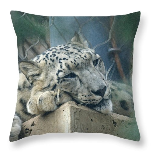Animals Throw Pillow featuring the digital art Day Dream by Ernie Echols
