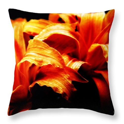 Flowers Throw Pillow featuring the photograph Day Lilies by Brian Druggan