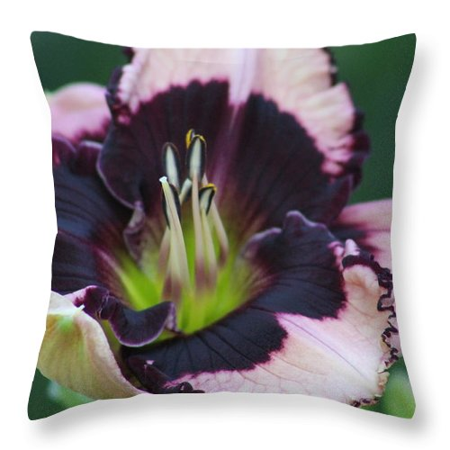 Daylilies Throw Pillow featuring the photograph Daylily 12 by G Berry