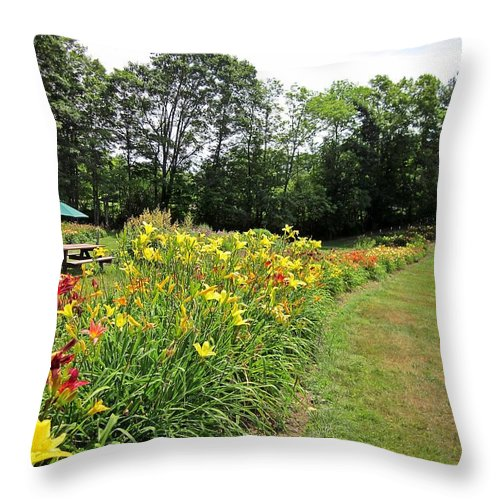Daylilies Throw Pillow featuring the photograph Daylily River by MTBobbins Photography