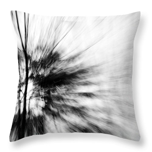 Black & White Photography Throw Pillow featuring the photograph Dead Ash 2 by Jackie Novak