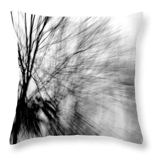 Ash Tree Throw Pillow featuring the photograph Dead Ash by Jackie Novak