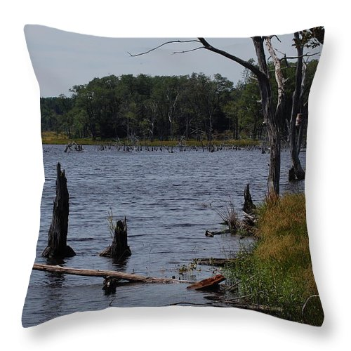 Lake Throw Pillow featuring the photograph Dead Lake by Susan Patrie