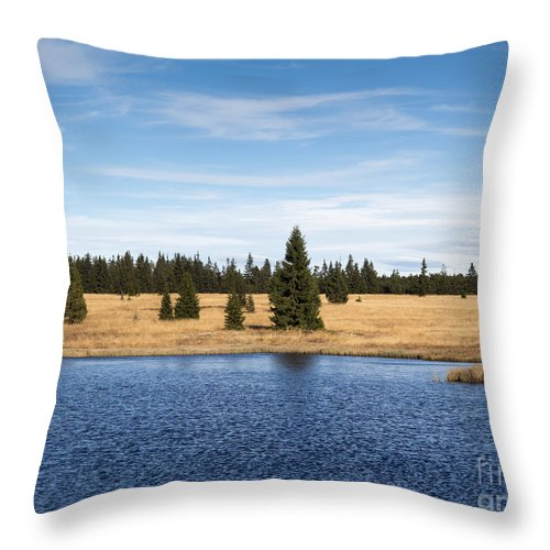 Lake Throw Pillow featuring the photograph Dead Pond by Michal Boubin