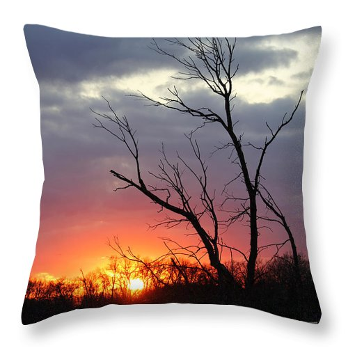 Tree Throw Pillow featuring the photograph Dead Tree At Sunset by Lori Tordsen