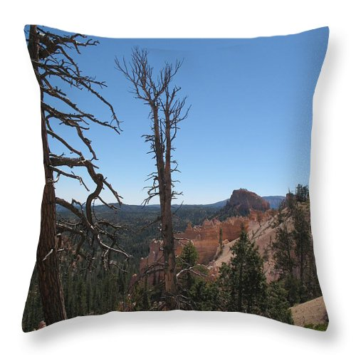 Bryce Canyon Throw Pillow featuring the photograph Dead Trees At Bryce Canyon by Christiane Schulze Art And Photography