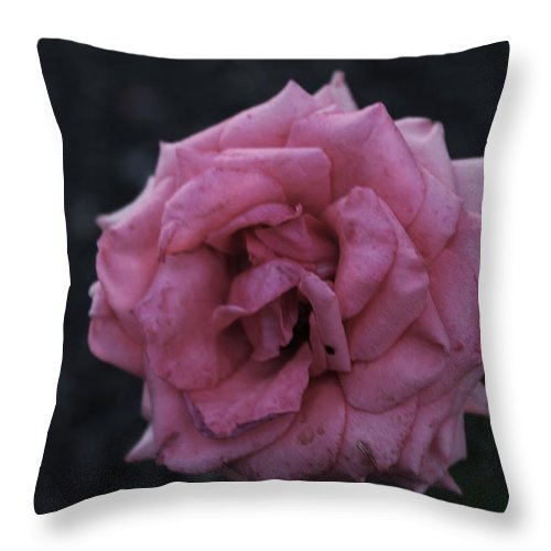 Pink Throw Pillow featuring the pyrography Deadly by Kayla Benjamin