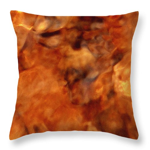 Water Reflection Throw Pillow featuring the photograph Death In Autumn by Chris Sotiriadis