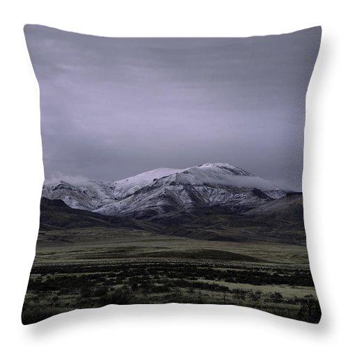 Desert Throw Pillow featuring the photograph December In Orovada 1 by Karen W Meyer