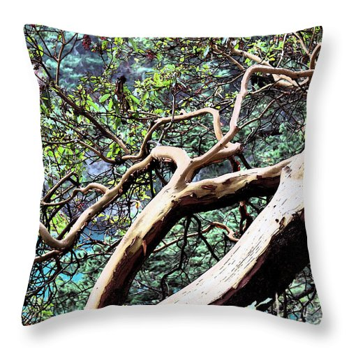 Nature Throw Pillow featuring the photograph Deception Twist by Brad Walters