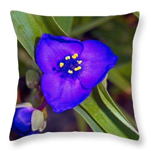 Blue Throw Pillow featuring the photograph Deep Blue Triangle by Robert Meyers-Lussier