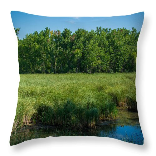 South Dakota Throw Pillow featuring the photograph Deep Into.... by M Dale