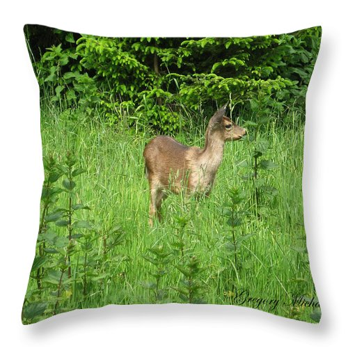 Deer In Field Throw Pillow featuring the photograph Deer In Field by Safe Haven Photography Northwest