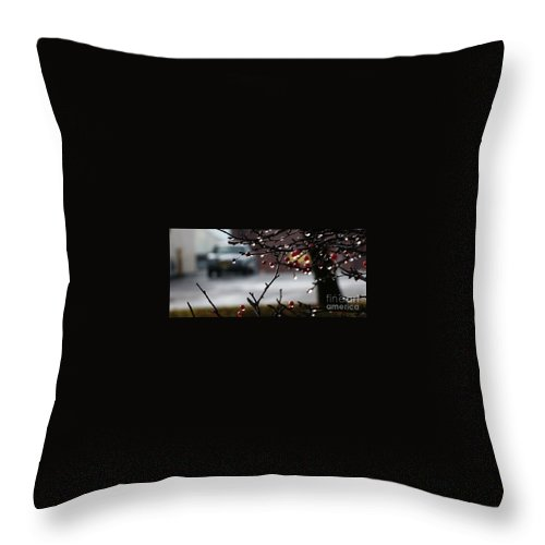 Rain Throw Pillow featuring the photograph Defined In Tears - 1 by Linda Shafer