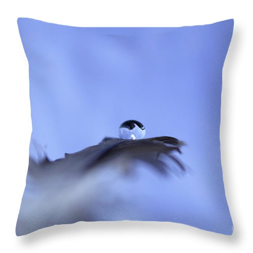 Feather Throw Pillow featuring the photograph Delicate Magic by Krissy Katsimbras