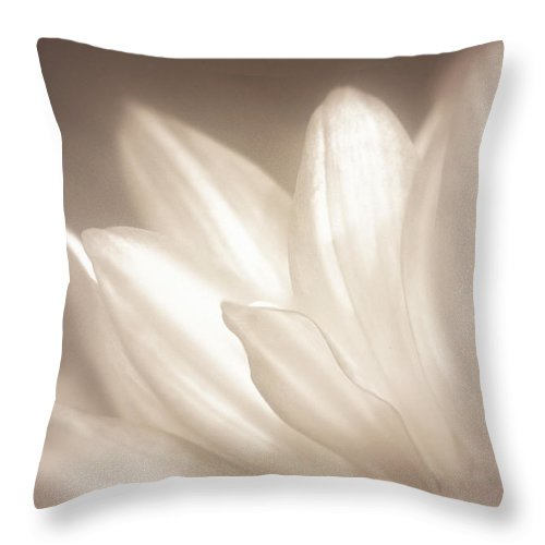 Bloom Throw Pillow featuring the photograph Delicate by Scott Norris