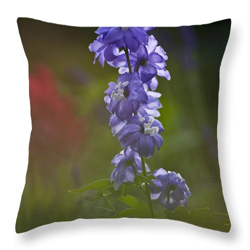 Heiko Throw Pillow featuring the photograph Delphinium Blossom by Heiko Koehrer-Wagner