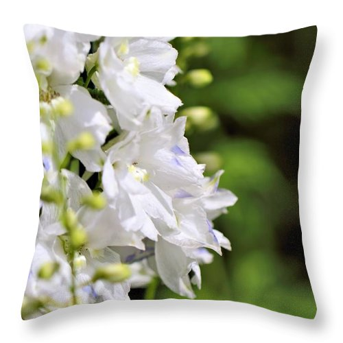 White Delphinium Throw Pillow featuring the photograph Delphinium by Katherine White