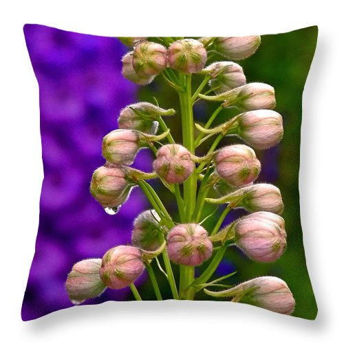 Delphinium Throw Pillow featuring the photograph Delphinium by Rona Black