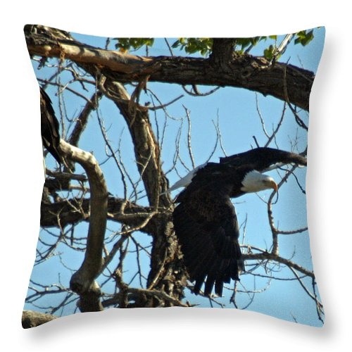 Colorado Throw Pillow featuring the photograph Departure by Bob Hislop