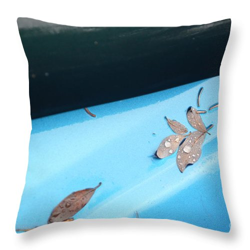 Descent Throw Pillow featuring the photograph Descent Through The Blue by Brian Boyle