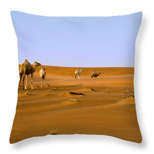 Camel Throw Pillow featuring the photograph Desert Camels by Mick House