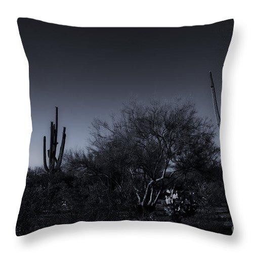 Arizona Throw Pillow featuring the photograph Desert Moon by Bob Hislop