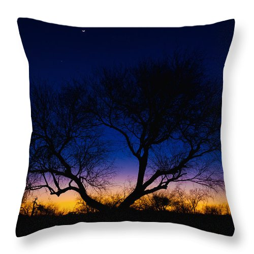 Outdoor Throw Pillow featuring the photograph Desert Silhouette by Chad Dutson