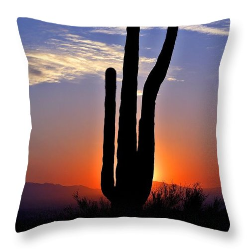 Arizona Throw Pillow featuring the photograph Desert Sunset by Mountain Dreams