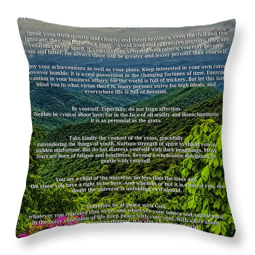 Desiderata Throw Pillow featuring the photograph Desiderata by Lynne Jenkins