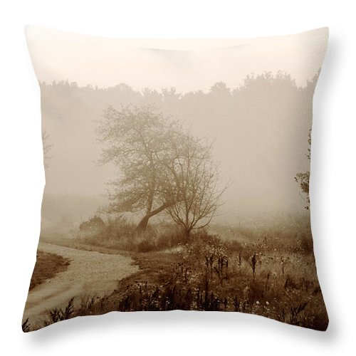 Tree Throw Pillow featuring the photograph Desolation by Bruce Patrick Smith