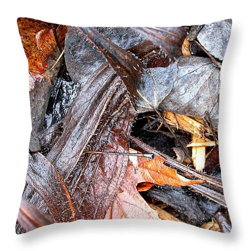 Remains Of The Garden Throw Pillow featuring the photograph Detritis by Cynthia Wallentine