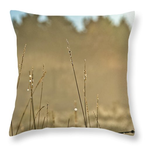 Throw Pillow featuring the photograph Dew Fog And Grasses by Cheryl Baxter