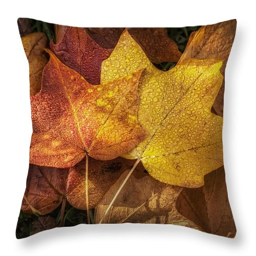 Leaf Throw Pillow featuring the photograph Dew On Autumn Leaves by Scott Norris