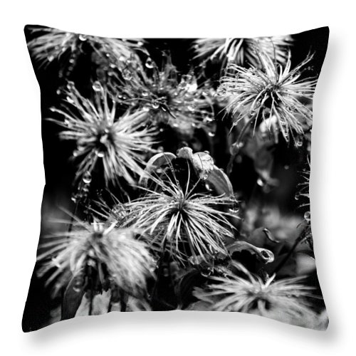 Flowers Throw Pillow featuring the photograph Dew That Found by The Artist Project