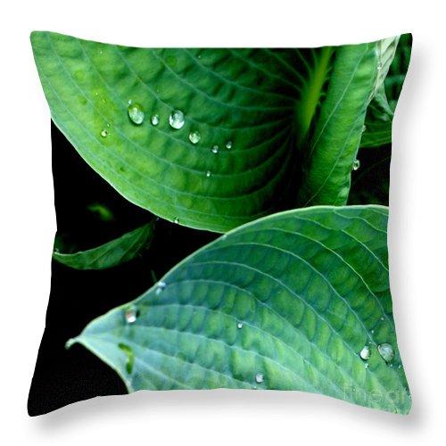Hosta Throw Pillow featuring the photograph Dew by Valerie Fuqua