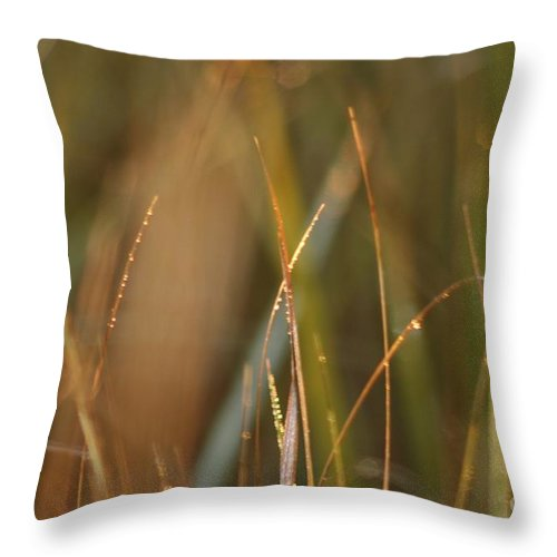 Dew Throw Pillow featuring the photograph Dewy Grasses by Nadine Rippelmeyer