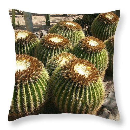 Green Cactus Throw Pillow featuring the photograph Mother-in-law's Cushion by Christiane Schulze Art And Photography