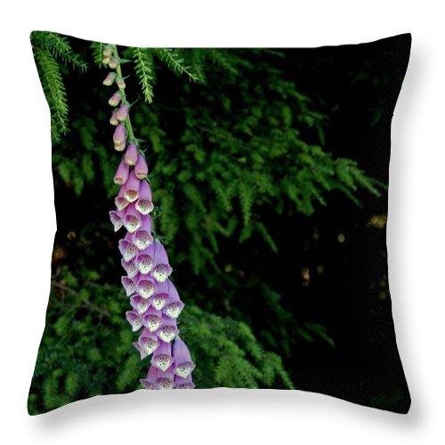 Alaska Throw Pillow featuring the photograph Digitalis by Joseph Yarbrough