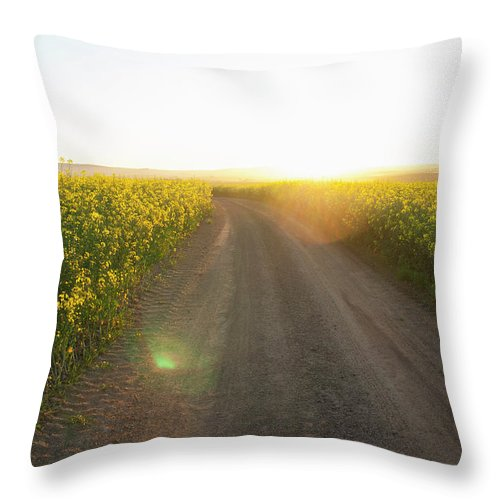 Tranquility Throw Pillow featuring the photograph Dirt Road In Field Of Flowers by Luka