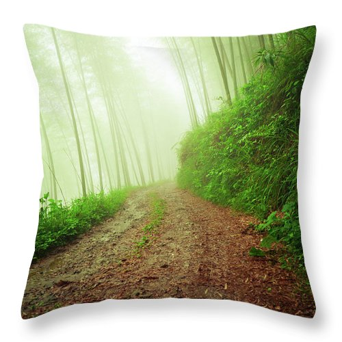 Extreme Terrain Throw Pillow featuring the photograph Dirt Road Leading Through Foggy Forest by Fzant