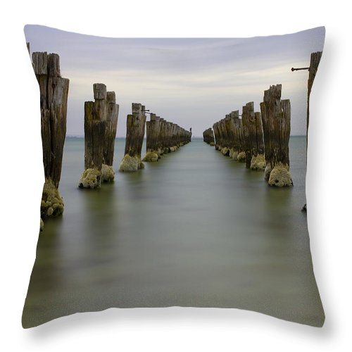 Landscape Throw Pillow featuring the photograph Discarded by Greg McMahon