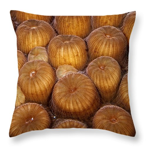 Jeannoren Throw Pillow featuring the photograph Macro Abstract Of Coral by Jean Noren