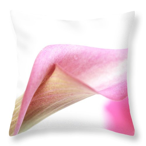 Lily Throw Pillow featuring the photograph Dissolve by Amanda Barcon