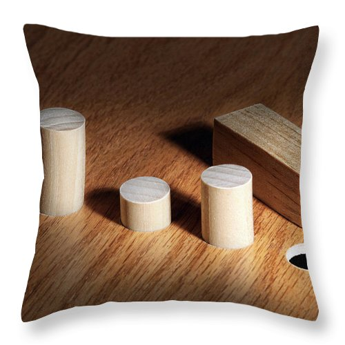 Square Throw Pillow featuring the photograph Diversity Concept by Tom Mc Nemar